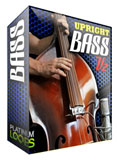 Double Bass Samples