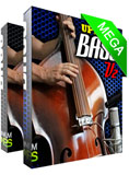 Upright Double Bass Mega Pack