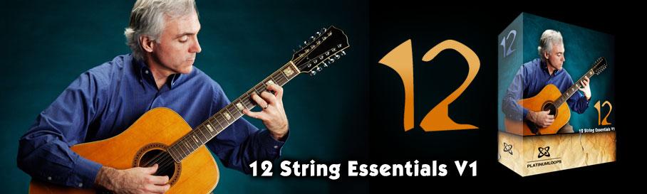 12 String Acoustic Guitar Loops Samples